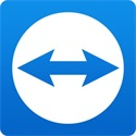 TeamViewer Business Subscription